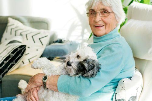 dog with senior citizen